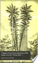 Viaggio di circumnavigazione della regia corvetta  Caracciolo   comandante C  de Amezaga   negli anni 1881 82 83 84