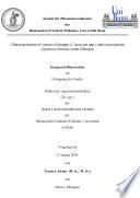 Characterisation Of Viruses Of Pepper Capsicum Spp And Sweet Potato Ipomoea Batatas From Ethiopia book