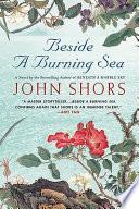 Beside a Burning Sea Book PDF