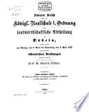 Bericht über die Königliche Realschule I. Ordnung und Landwirthschaftliche Abtheilung zu Döbeln0