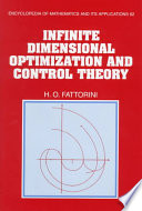 Infinite Dimensional Optimization And Control Theory : using an approach that unifies finite...