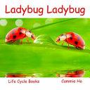Ladybug Ladybug PDF