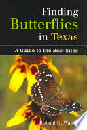 Finding Butterflies in Texas Will Lead Butterfly Watchers To The Best Places