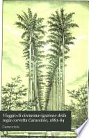 Viaggio di circumnavigazione della regia corvetta Caracciolo  1881 84
