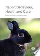 Rabbit Behaviour  Health and Care