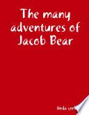 The many adventures of Jacob Bear