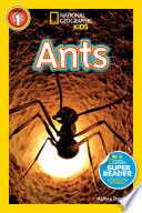 National Geographic Readers  Ants