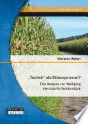 Tschick  als Bildungsroman  Eine Analyse von Wolfgang Herrndorfs Meisterst  ck