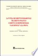 La tutela dei diritti fondamentali tra diritto politico e diritto giurisprudenziale    Casi difficili   alla prova
