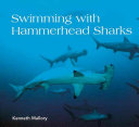 Swimming with Hammerhead Sharks