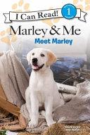 Marley Me Meet Marley