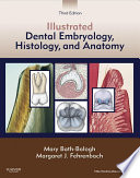 Illustrated Dental Embryology  Histology  and Anatomy