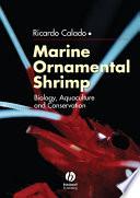 Marine Ornamental Shrimp