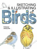 Sketching   Illustrating Birds