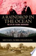 Raindrop in the Ocean