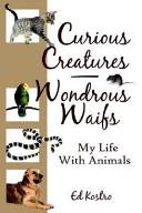 Curious Creatures - Wondrous Waifs