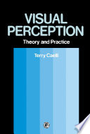 Visual Perception  Theory and Practice