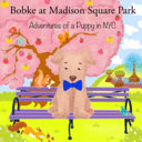 Bobke at Madison Square Park