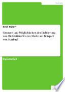 Grenzen und Möglichkeiten der Etablierung von Biokraftstoffen im Markt am Beispiel von SunFuel