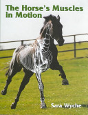 The Horse s Muscles in Motion