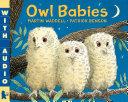 download ebook owl babies pdf epub