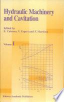 Hydraulic Machinery and Cavitation