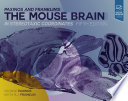 Paxinos And Franklin S The Mouse Brain In Stereotaxic Coordinates