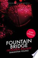 Fountain Bridge Verboden Kussen