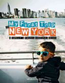 My First Trip to New York  A Family s Travel Survival Guide