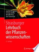 Strasburger     Lehrbuch der Pflanzenwissenschaften