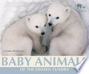 Baby Animals of the Frozen Tundra