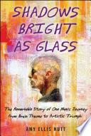 Shadows Bright As Glass book