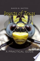 Insects of Texas Commonly Found In Texas Grouped By Class And