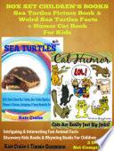 Animals Books For Kids  Sea Turtles  Pandas   Unicorns