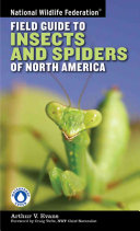 National Wildlife Federation Field Guide to Insects and Spiders   Related Species of North America