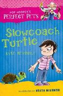 Slowcoach Turtle