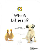 What s Different