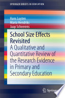 School Size Effects Revisited