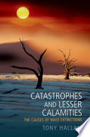 Catastrophes and Lesser Calamities