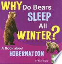 Why Do Bears Sleep All Winter