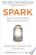 Spark Book PDF