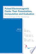 Pulsed Electromagnetic Fields  Their Potentialities  Computation and Evaluation