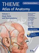 Head Neck And Neuroanatomy Thieme Atlas Of Anatomy Latin Nomenclature