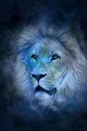 Cool Blue Zodiac Horoscope Leo the Lion Journal