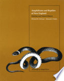 Amphibians and Reptiles of New England