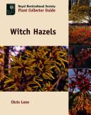 Witch Hazels