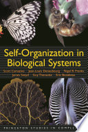 Self organization in Biological Systems