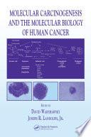 Molecular Carcinogenesis and the Molecular Biology of Human Cancer