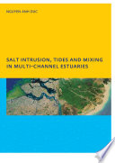 Salt Intrusion  Tides and Mixing in Multi Channel Estuaries