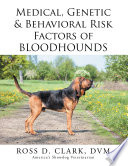 Medical, Genetic & Behavioral Risk Factors of Bloodhounds And Positive Attributes Of This Breed Including Origin